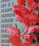 War Memorial, image courtesy of Monash University