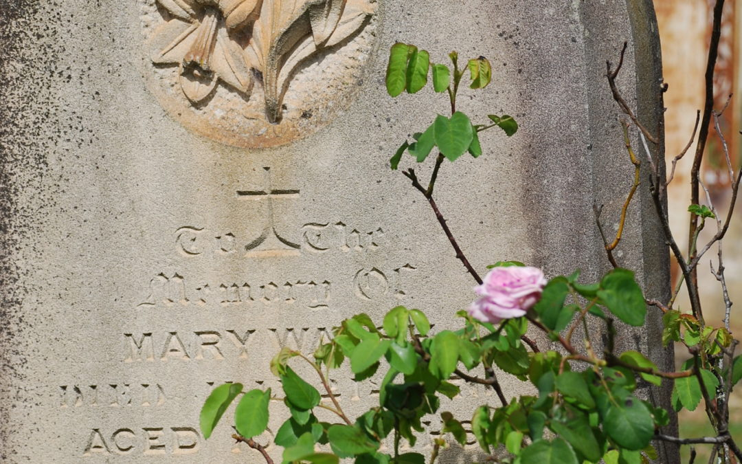 Deathly Neighbours: the evolution of Sydney's cemeteries