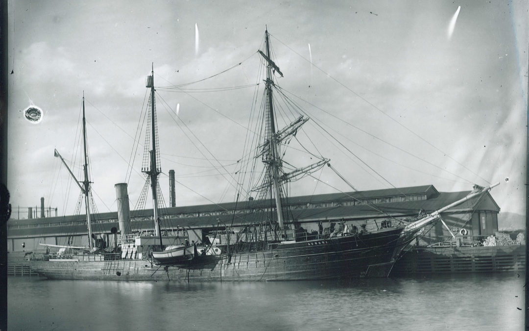 History Week with The Port of Yamba Historical Society Inc.
