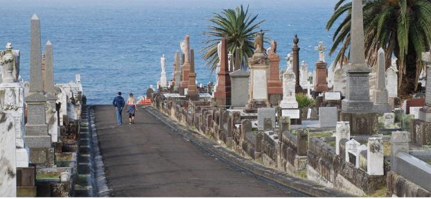 Sydney Cemetery Adventures