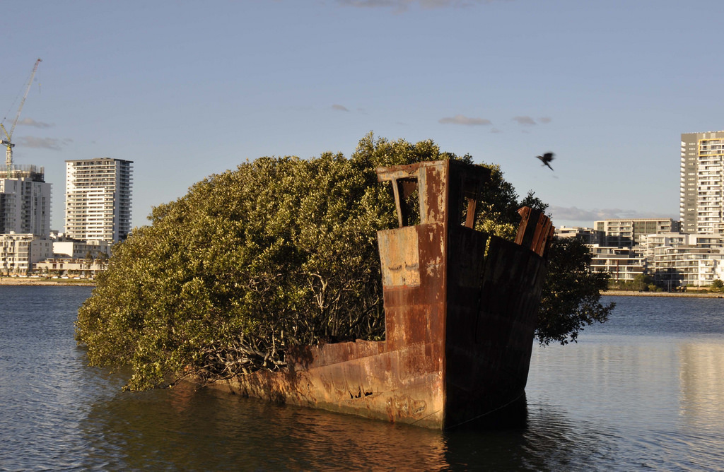 Shipwrecks of Homebush Bay