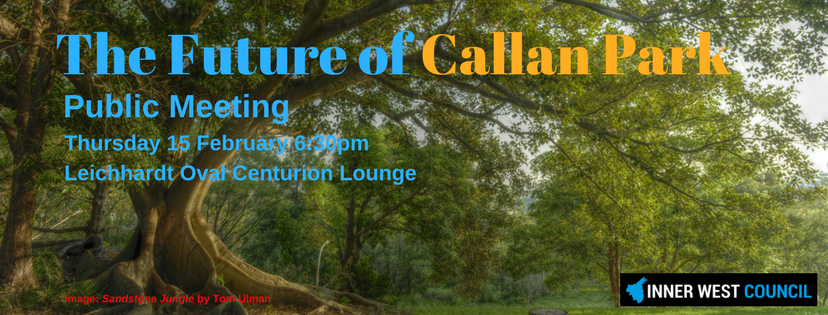 Meeting to outline the future of Callan Park