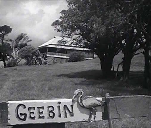 Pastures of the Blue Crane: TV mini series screening