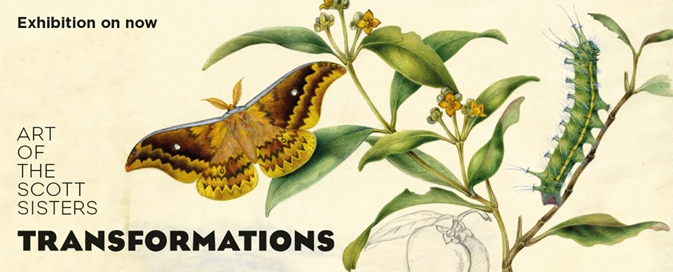 Exhibition | Lake Mac Libraries | Transformations: Art of the Scott Sisters | 8 June–21 July